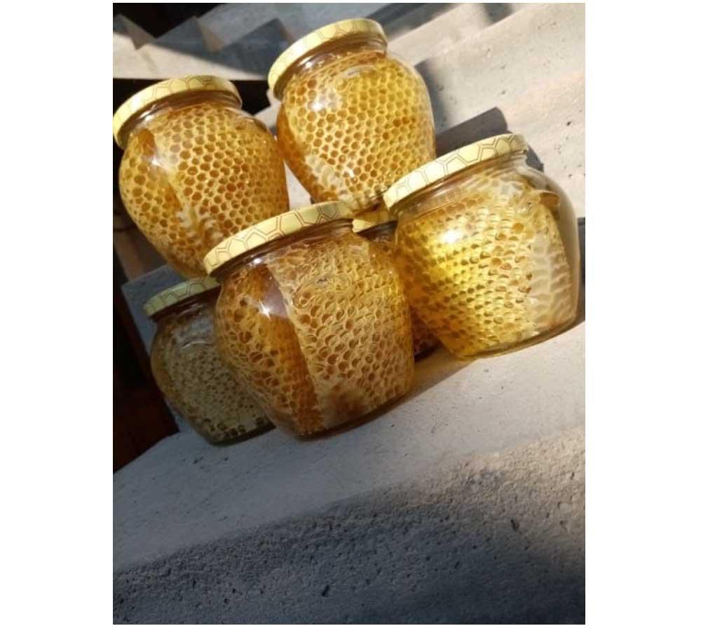 Pčelarstvo Targuš